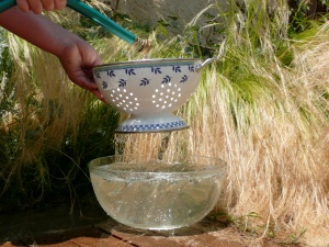 The colander and the bowl