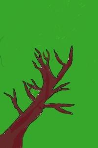 Will's Tree